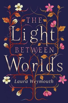 Light-Between-Worlds-website-678x1024