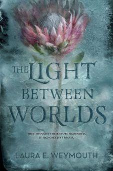 thelightbetweenourworlds1